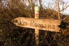 La Via Romana de la Vall d´Ager-7693