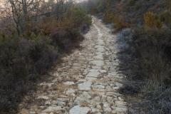 La Via Romana de la Vall d´Ager-7695