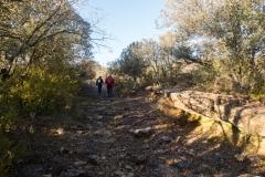 La Via Romana de la Vall d´Ager-7699