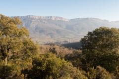 La Via Romana de la Vall d´Ager-7706