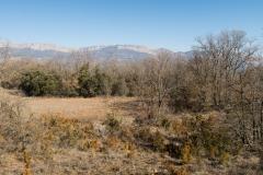 La Via Romana de la Vall d´Ager-7751