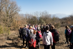 La Via Romana de la Vall d´Ager-7754