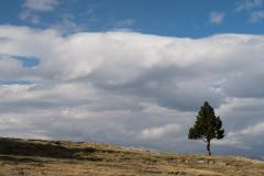 Pic de Tudela-4035