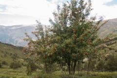 Pic de Tudela-4054