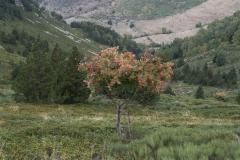 Pic de Tudela-4056