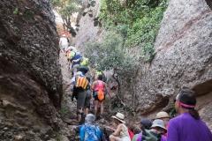 senders d'Agulles de Montserrat-9799
