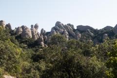senders d'Agulles de Montserrat-9812