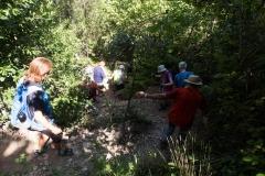 senders d'Agulles de Montserrat-9828