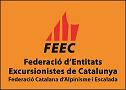 logo_feec_taronja_verticalPETIT