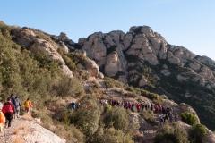 Montserrat a Hostalets de Pierola-1360399