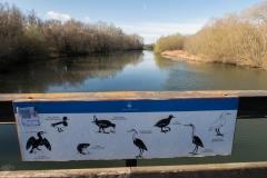 Alcoletge i Montoliu de Lleida-36
