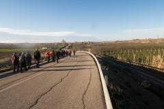 Alcoletge i Montoliu de Lleida-7