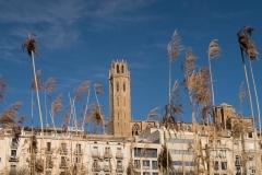 Alcoletge i Montoliu de Lleida-73