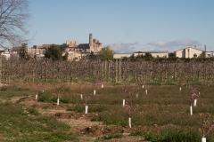 Alcoletge i Montoliu de Lleida-86