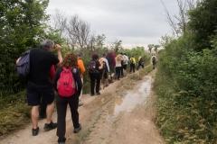 Ruta de l'aigua Tarroja-IMG_0035