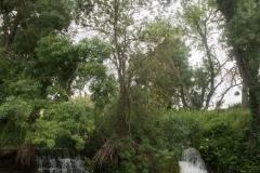 Ruta de l'aigua Tarroja-IMG_0111
