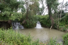 Ruta de l'aigua Tarroja-IMG_0112