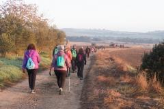 Mas Farell-Camí dels Rossells-1072