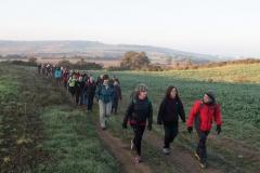 Mas Farell-Camí dels Rossells-1085