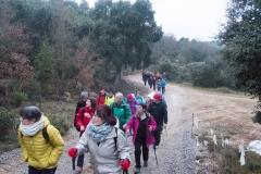 Camí dels Rossells-Ogern-3088
