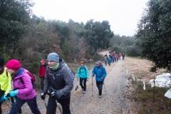 Camí dels Rossells-Ogern-3090