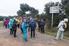 Camí dels Rossells-Ogern-3095