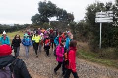 Camí dels Rossells-Ogern-3100