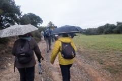 Camí dels Rossells-Ogern-3104