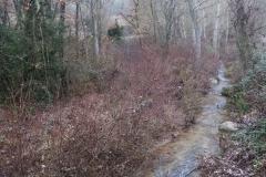Camí dels Rossells-Ogern-3117