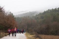 Camí dels Rossells-Ogern-3122