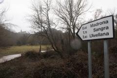 Camí dels Rossells-Ogern-3127