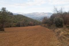Camí dels Rossells-Ogern-3152