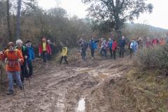 Camí dels Rossells-Ogern-3160
