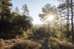 Ogern-Serra-seca-4351