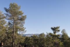 Ogern-Serra-seca-4379