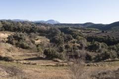 Ogern-Serra-seca-4383