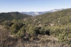 Ogern-Serra-seca-4420