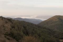 Serra-seca-a-Alinyà-5423