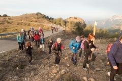 Serra-seca-a-Alinyà-5428