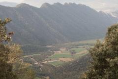Serra-seca-a-Alinyà-5441