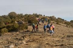 Serra-seca-a-Alinyà-5460