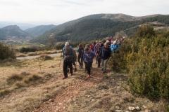 Serra-seca-a-Alinyà-5471