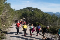 Caminada-pel-Penedés-4069