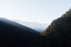 Arsèguel-La Seu Urgell-Arsèguel-La Seu Urgell-Arsèguel-La Seu Urgell-Arsèguel-La Seu Urgell-Arsèguel-La Seu Urgell--5887