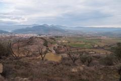 Pont de Montanyana a Tremp-1360563