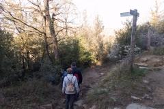 Caminada per l'Esquirol-0952