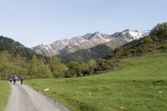 Caminada a Montgarri-9194