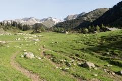 Caminada a Montgarri-9207