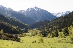 Caminada a Montgarri-9213