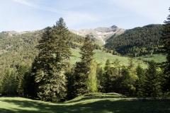Caminada a Montgarri-9221